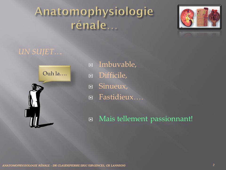 ANATOMOPHYSIOLOGIE RÉNALE – DR CLAUDEPIERRE ERIC (URGENCES, CH LANNION) Imbuvable, Difficile, Sinueux, Fastidieux…. Mais tellement passionnant! 2 UN S