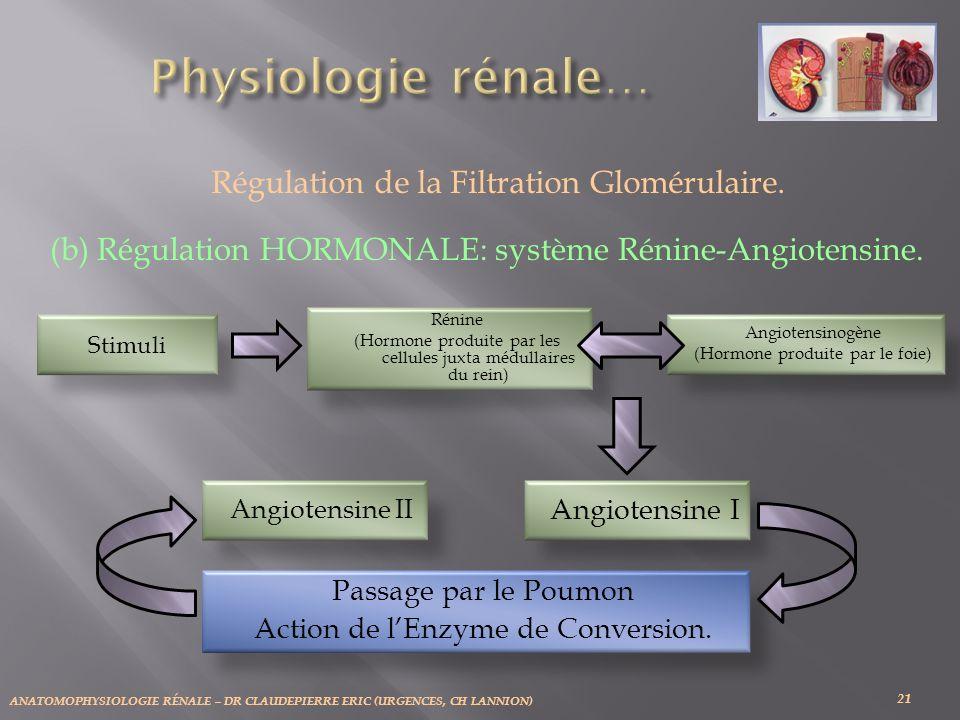 ANATOMOPHYSIOLOGIE RÉNALE – DR CLAUDEPIERRE ERIC (URGENCES, CH LANNION) 21 Régulation de la Filtration Glomérulaire. (b) Régulation HORMONALE: système