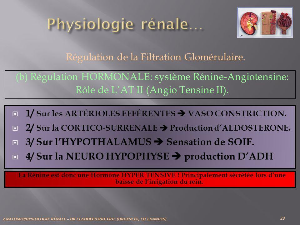 ANATOMOPHYSIOLOGIE RÉNALE – DR CLAUDEPIERRE ERIC (URGENCES, CH LANNION) 23 Régulation de la Filtration Glomérulaire. (b) Régulation HORMONALE: système