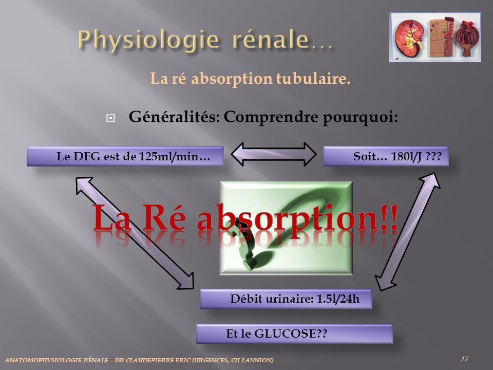 ANATOMOPHYSIOLOGIE RÉNALE – DR CLAUDEPIERRE ERIC (URGENCES, CH LANNION) 27 La ré absorption tubulaire. Généralités: Comprendre pourquoi: Le DFG est de