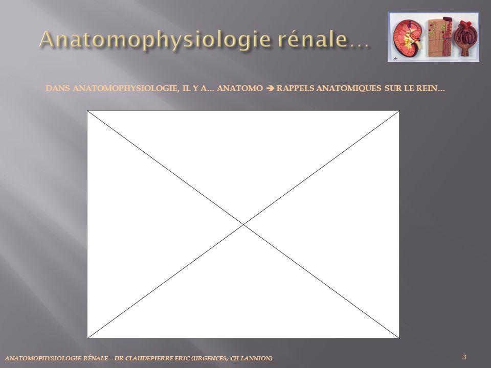 ANATOMOPHYSIOLOGIE RÉNALE – DR CLAUDEPIERRE ERIC (URGENCES, CH LANNION) 34 LES DIFFÉRENTS RÔLES DU REIN: a) Filtration glomérulaire.