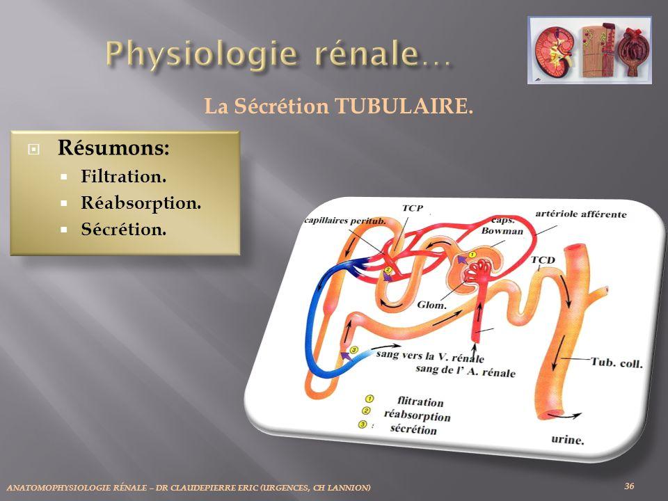 ANATOMOPHYSIOLOGIE RÉNALE – DR CLAUDEPIERRE ERIC (URGENCES, CH LANNION) 36 La Sécrétion TUBULAIRE.