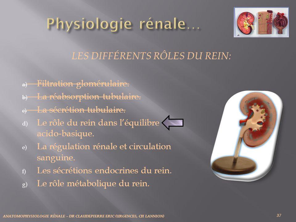 ANATOMOPHYSIOLOGIE RÉNALE – DR CLAUDEPIERRE ERIC (URGENCES, CH LANNION) 37 LES DIFFÉRENTS RÔLES DU REIN: a) Filtration glomérulaire. b) La réabsorptio