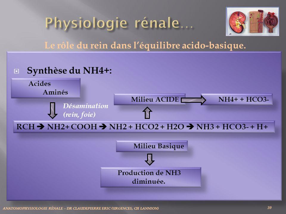 ANATOMOPHYSIOLOGIE RÉNALE – DR CLAUDEPIERRE ERIC (URGENCES, CH LANNION) 39 Le rôle du rein dans léquilibre acido-basique. Acides Aminés Désamination (