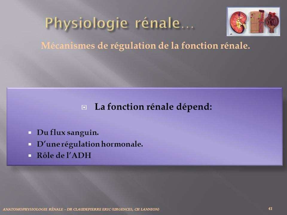 ANATOMOPHYSIOLOGIE RÉNALE – DR CLAUDEPIERRE ERIC (URGENCES, CH LANNION) 41 Mécanismes de régulation de la fonction rénale.
