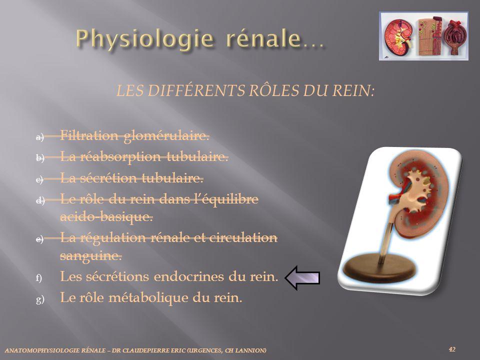 ANATOMOPHYSIOLOGIE RÉNALE – DR CLAUDEPIERRE ERIC (URGENCES, CH LANNION) 42 LES DIFFÉRENTS RÔLES DU REIN: a) Filtration glomérulaire. b) La réabsorptio
