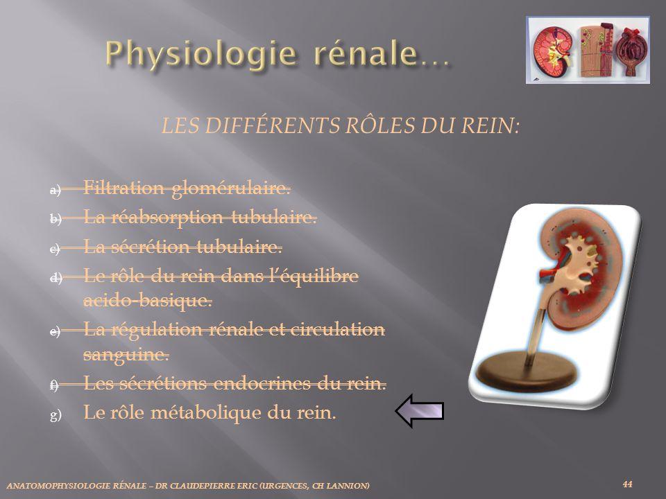 ANATOMOPHYSIOLOGIE RÉNALE – DR CLAUDEPIERRE ERIC (URGENCES, CH LANNION) 44 LES DIFFÉRENTS RÔLES DU REIN: a) Filtration glomérulaire. b) La réabsorptio