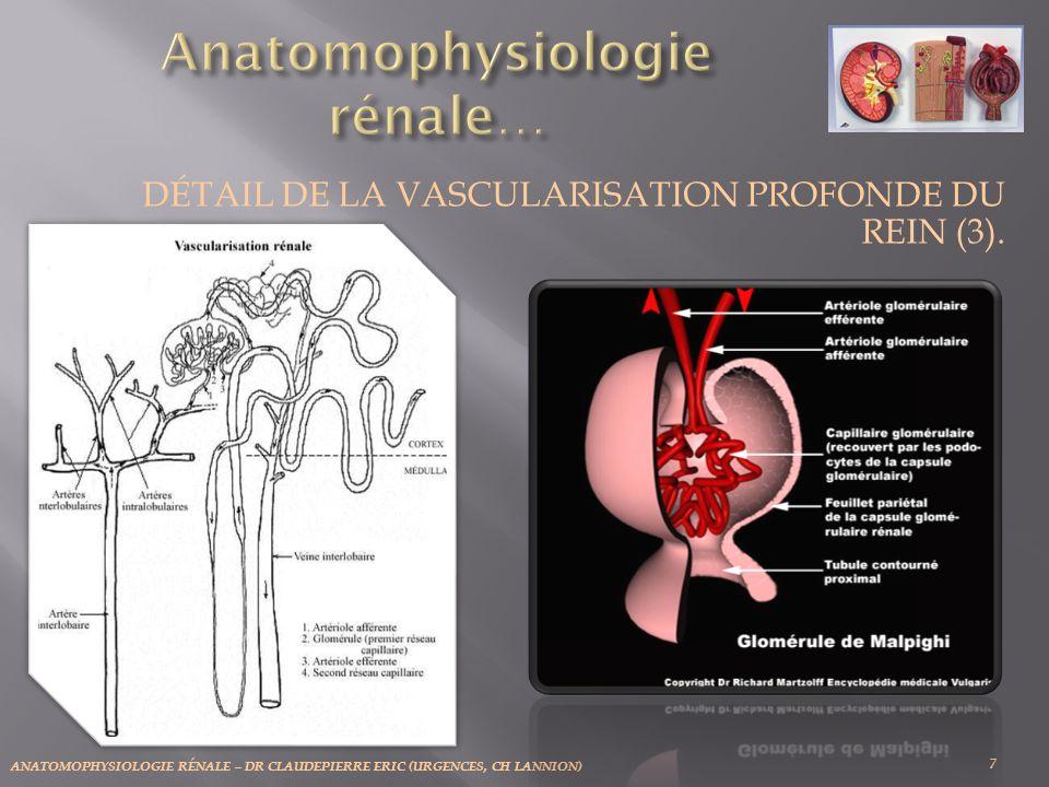 ANATOMOPHYSIOLOGIE RÉNALE – DR CLAUDEPIERRE ERIC (URGENCES, CH LANNION) 28 La ré absorption tubulaire.