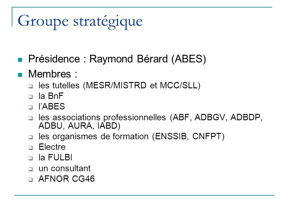 Groupe stratégique Présidence : Raymond Bérard (ABES) Membres : les tutelles (MESR/MISTRD et MCC/SLL) la BnF lABES les associations professionnelles (ABF, ADBGV, ADBDP, ADBU, AURA, IABD) les organismes de formation (ENSSIB, CNFPT) Electre la FULBI un consultant AFNOR CG46