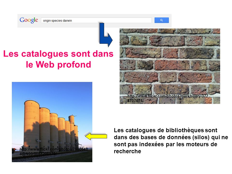 http://www.flickr.com/photos/markhillary/377 4707075/ http://www.flickr.com/photos/7590540 4@N00/5088208539/ Les catalogues sont dans le Web profond L