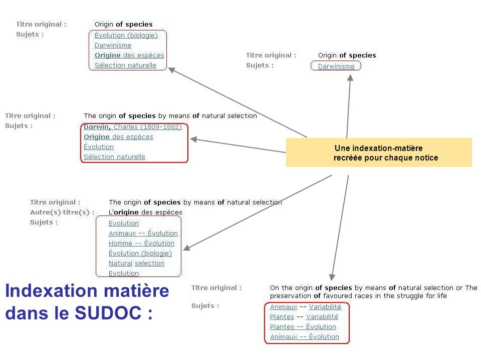Indexation matière dans le SUDOC : Une indexation-matière recréée pour chaque notice
