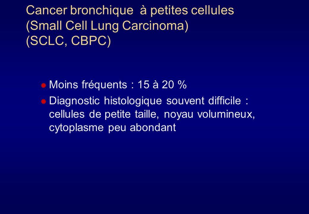 Cancer bronchique non à petites cellules (Non Small Cell Lung Carcinoma) (CBNPC, NSCLC) Ce sont les plus fréquents (80 % des cancers bronchiques) Se divisent en : carcinomes épidermoïdes adénocarcinomes indifférenciés ou carcinomes à grandes cellules