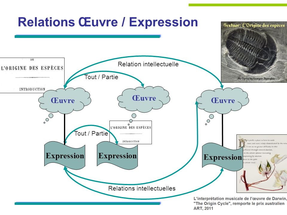 Œuvre Expression Relation intellectuelle Relations intellectuelles Tout / Partie Relations Œuvre / Expression