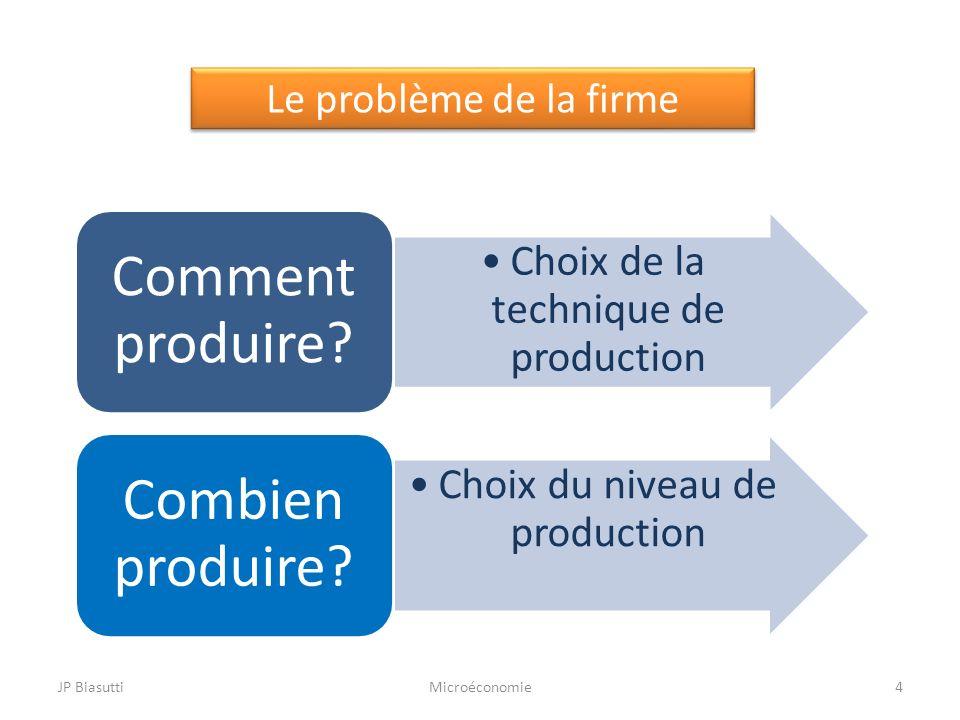 Le problème de la firme Choix de la technique de production Comment produire? Choix du niveau de production Combien produire? 4MicroéconomieJP Biasutt