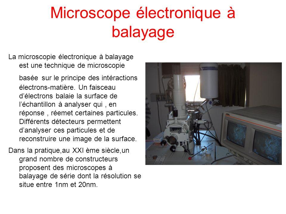 Microscope électronique à balayage La microscopie électronique à balayage est une technique de microscopie basée sur le principe des intéractions élec
