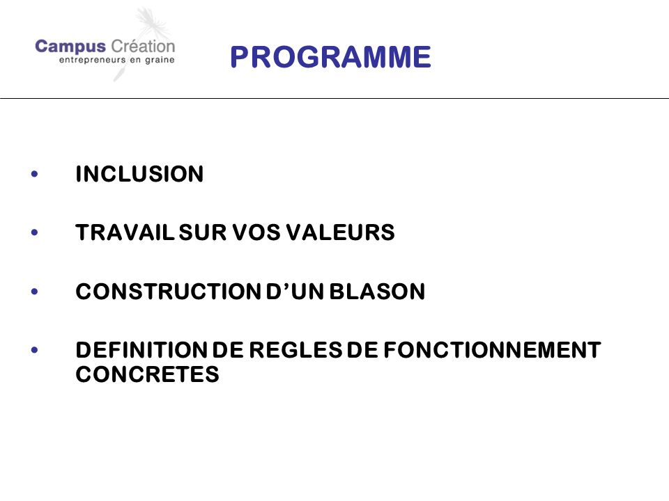 PROGRAMME INCLUSION TRAVAIL SUR VOS VALEURS CONSTRUCTION DUN BLASON DEFINITION DE REGLES DE FONCTIONNEMENT CONCRETES