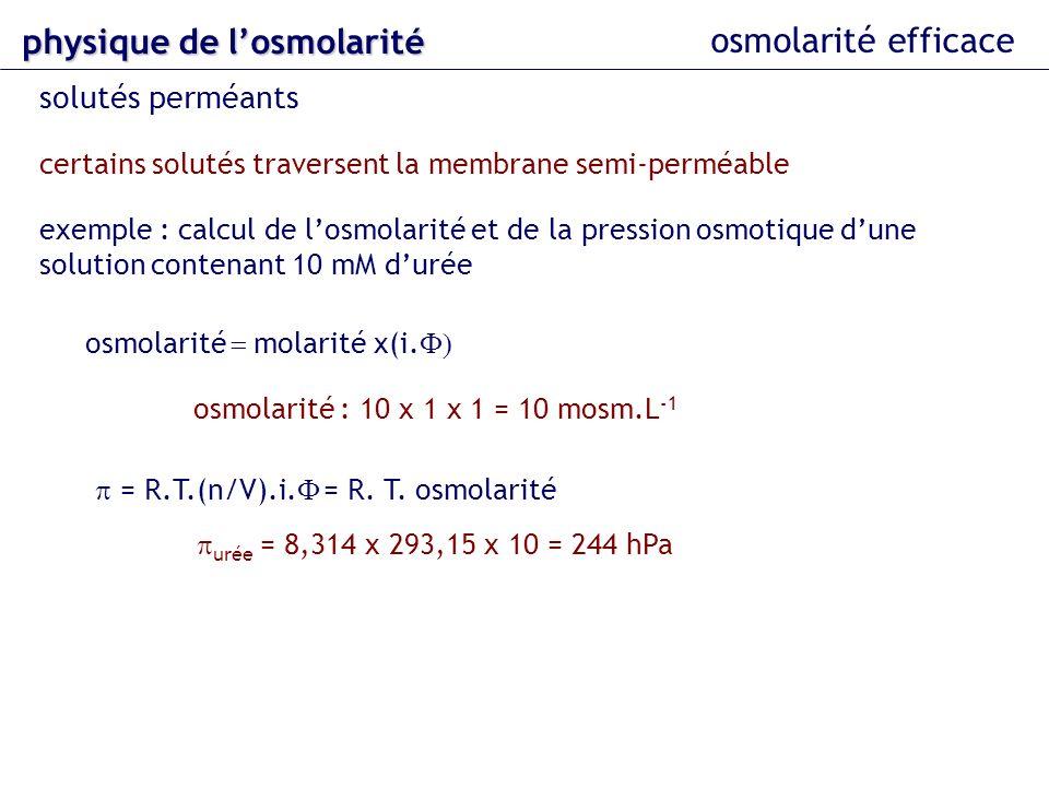 osmolarité efficace solutés perméants certains solutés traversent la membrane semi-perméable exemple : calcul de losmolarité et de la pression osmotiq
