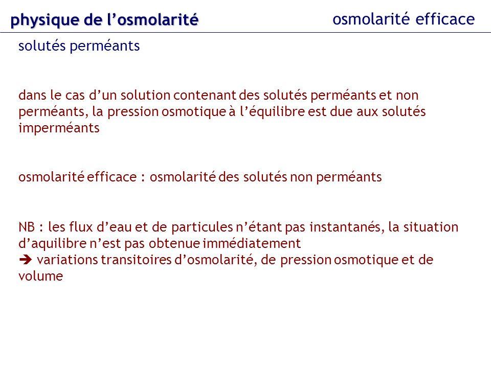 osmolarité efficace physique delosmolarité physique de losmolarité solutés perméants dans le cas dun solution contenant des solutés perméants et non p