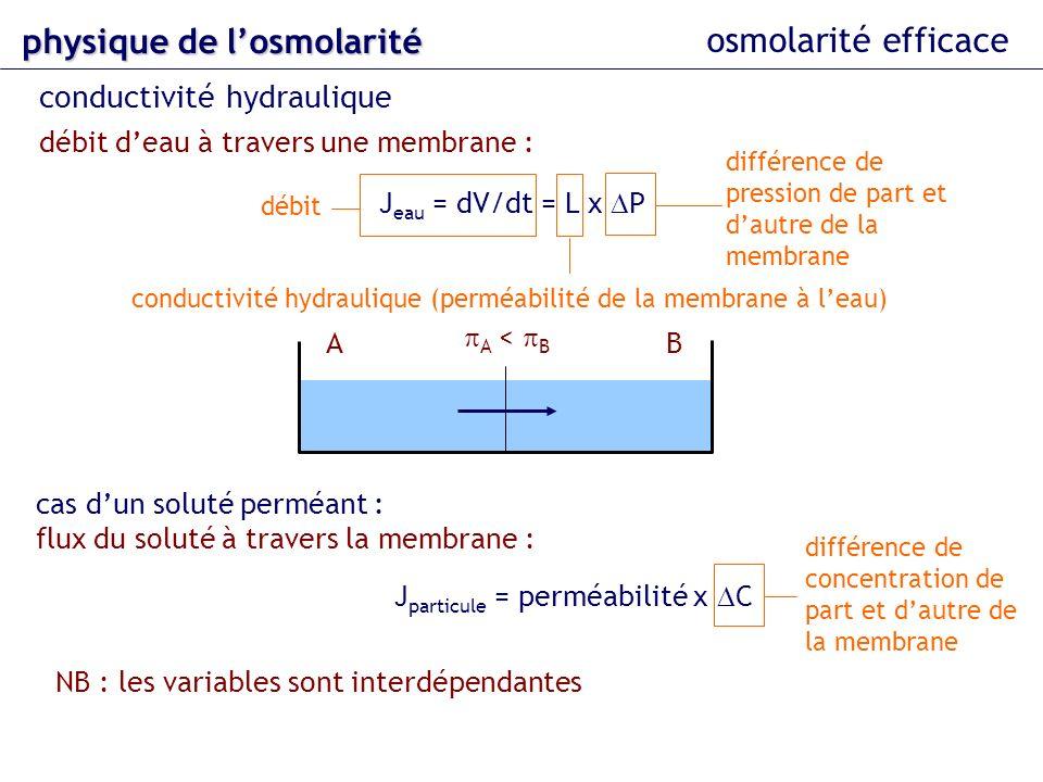 osmolarité efficace physique delosmolarité physique de losmolarité conductivité hydraulique débit deau à travers une membrane : J eau = dV/dt = L x P