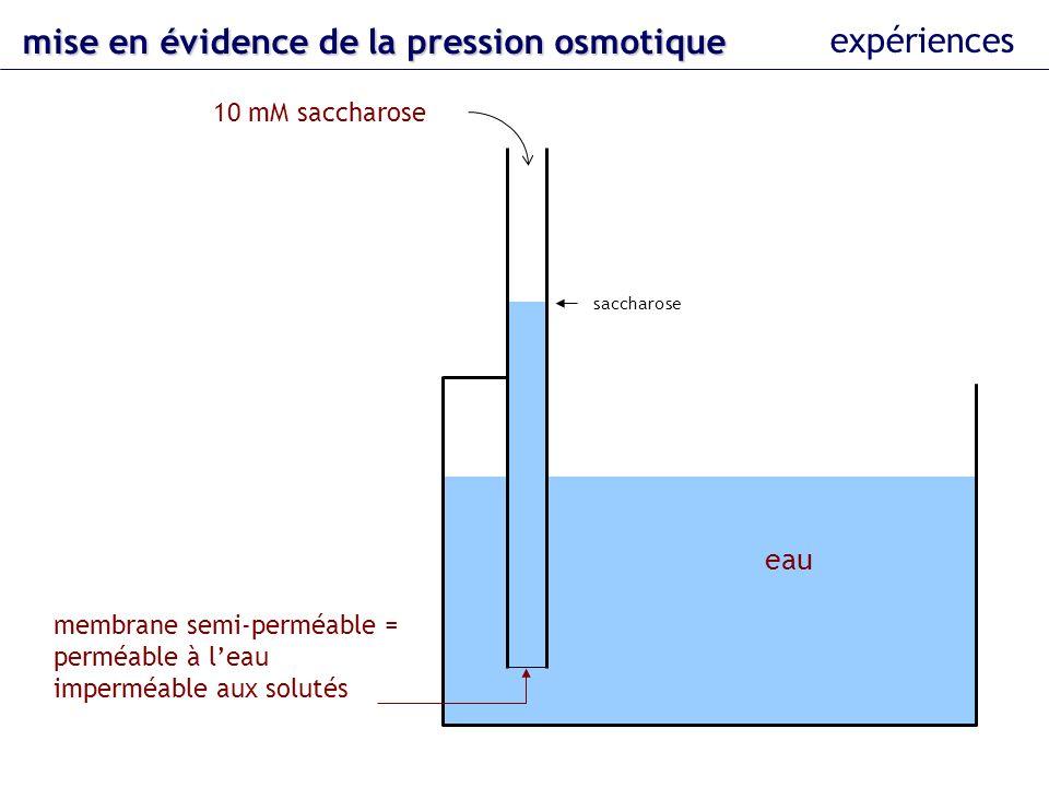 eau 10 mM saccharose membrane semi-perméable = perméable à leau imperméable aux solutés pression sur le piston saccharose 244 hPa mise en évidence dela pression osmotique mise en évidence de la pression osmotique expériences