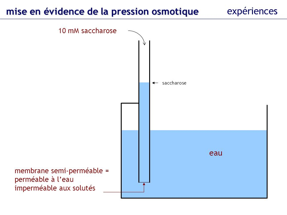 osmolarité osmolarité = (n/V).i.