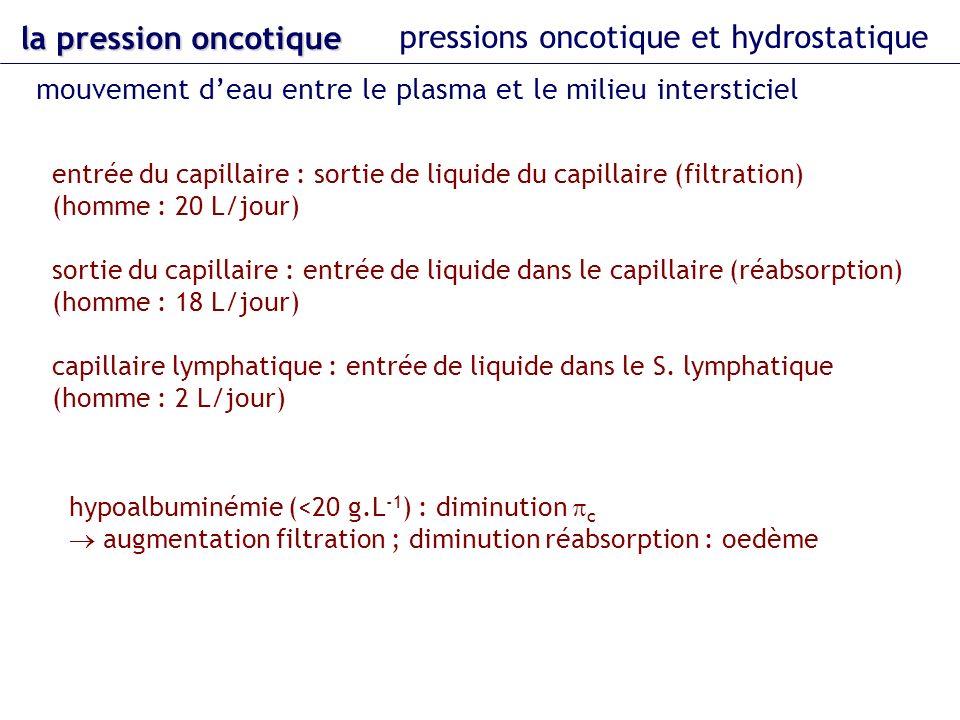 la pression oncotique pressions oncotique et hydrostatique mouvement deau entre le plasma et le milieu intersticiel entrée du capillaire : sortie de l