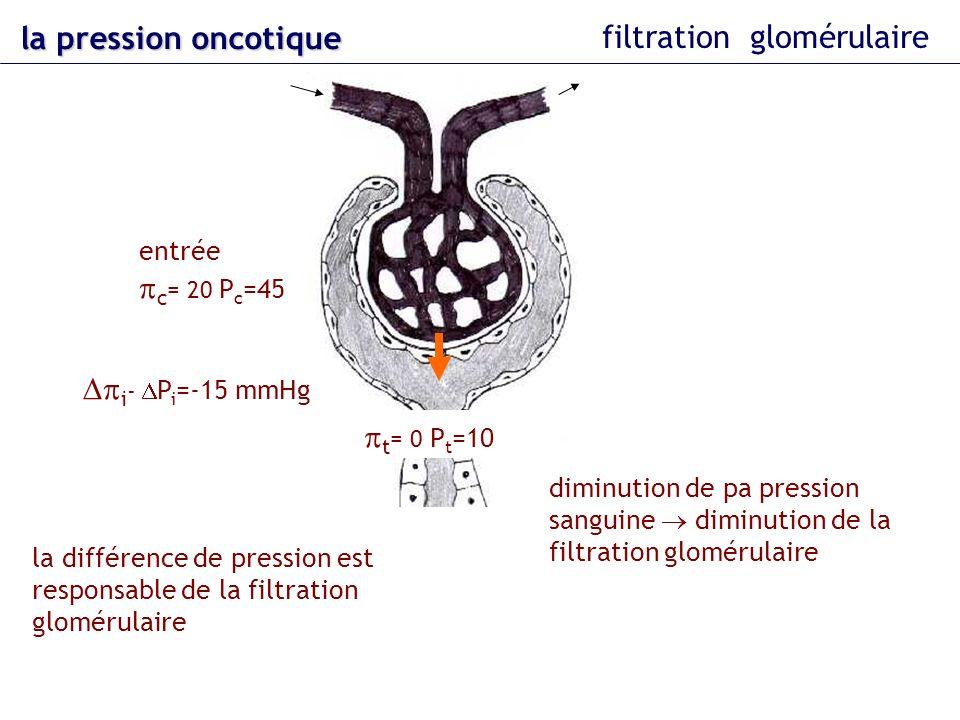 la pression oncotique filtration glomérulaire t = 0 P t =10 entrée c = 20 P c =45 i - P i =-15 mmHg la différence de pression est responsable de la fi