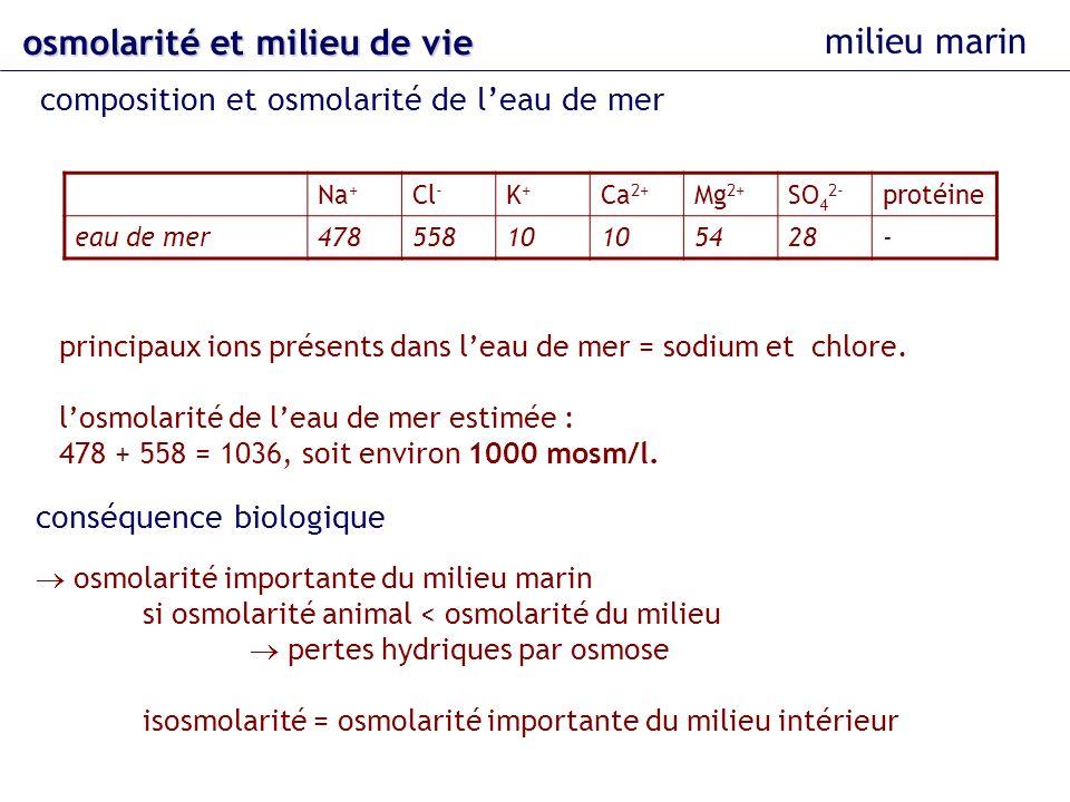 osmolarité et milieu de vie milieu marin composition et osmolarité de leau de mer Na + Cl - K+K+ Ca 2+ Mg 2+ SO 4 2- protéine eau de mer47855810 5428-