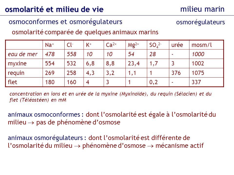 osmolarité et milieu de vie milieu marin osmoconformes et osmorégulateurs osmorégulateurs osmolarité comparée de quelques animaux marins concentration