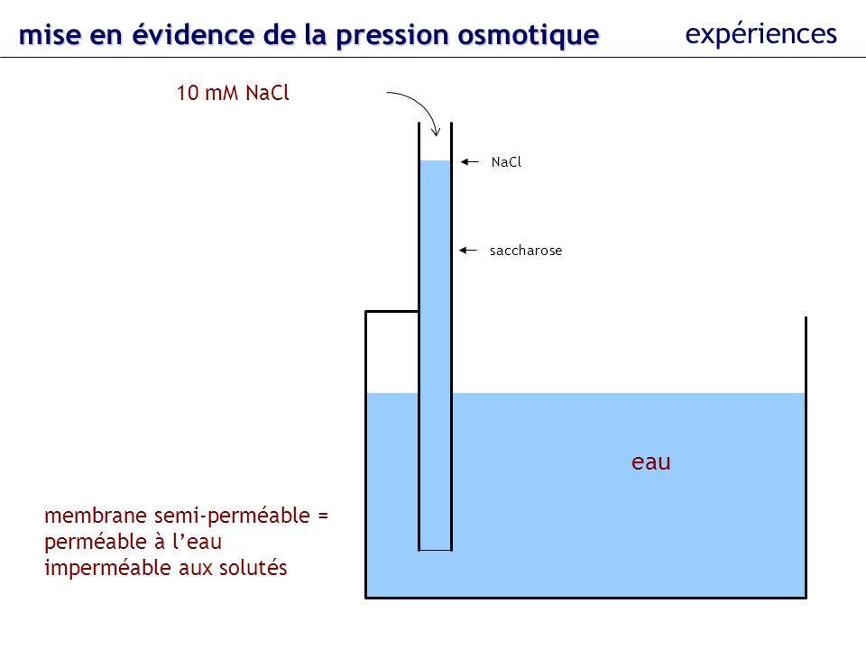 eau 10 mM saccharose membrane semi-perméable = perméable à leau imperméable aux solutés pression sur le piston NaCl saccharose 453 hPa mise en évidence dela pression osmotique mise en évidence de la pression osmotique expériences