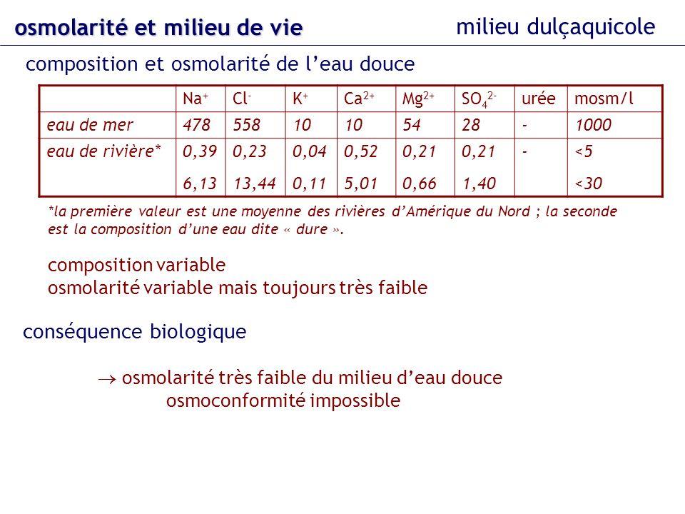 osmolarité et milieu de vie composition et osmolarité de leau douce milieu dulçaquicole Na + Cl - K+K+ Ca 2+ Mg 2+ SO 4 2- uréemosm/l eau de mer478558