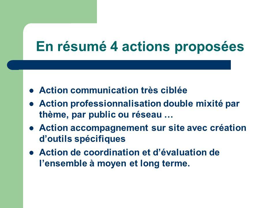 En résumé 4 actions proposées Action communication très ciblée Action professionnalisation double mixité par thème, par public ou réseau … Action acco