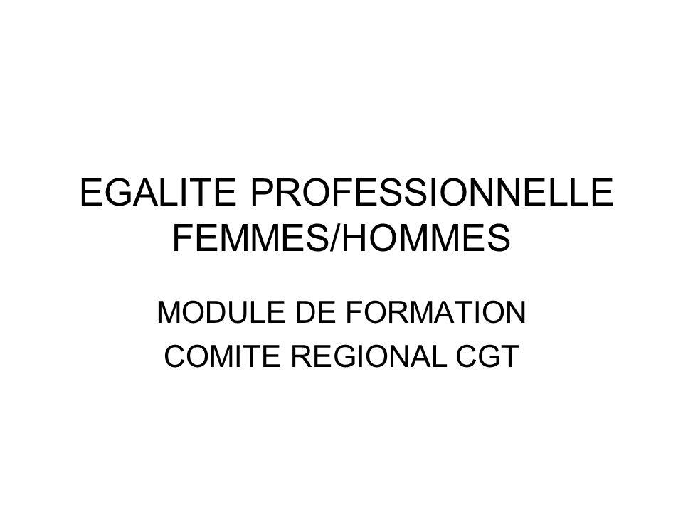 EGALITE PROFESSIONNELLE FEMMES/HOMMES MODULE DE FORMATION COMITE REGIONAL CGT