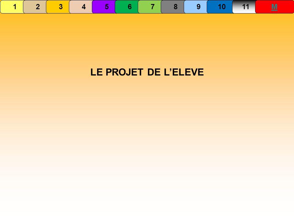 LE PROJET DE LELEVE 1234567891011M