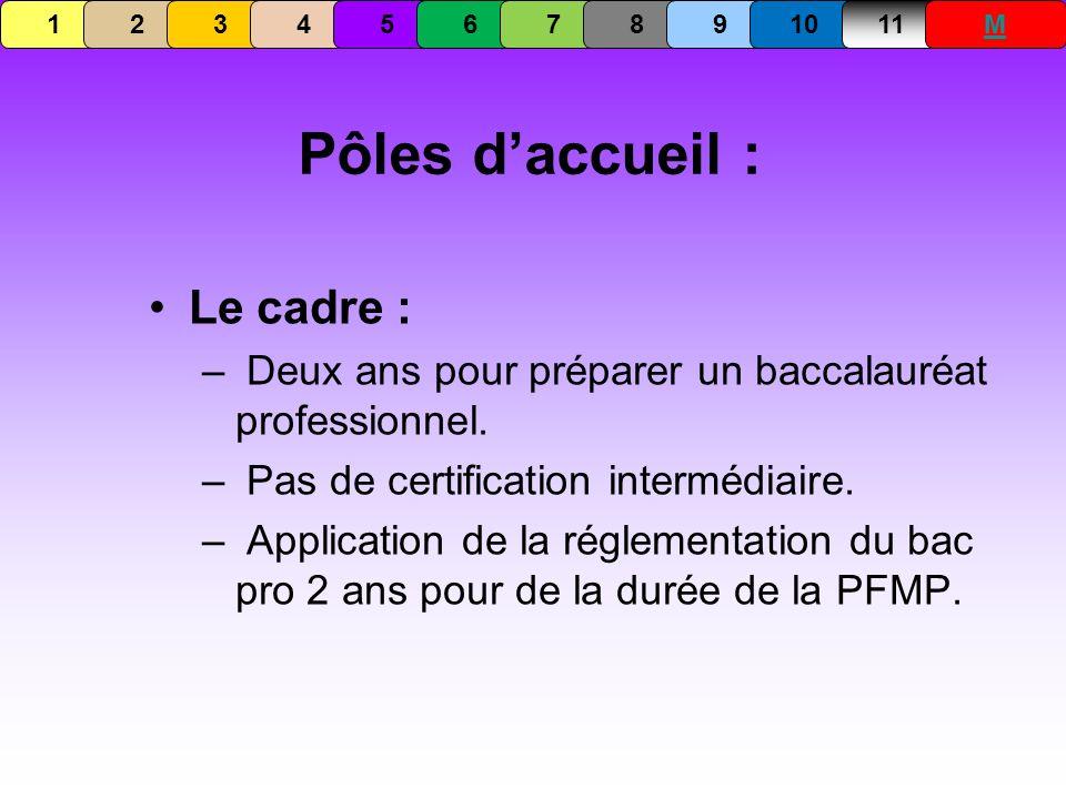 Pôles daccueil : Le cadre : – Deux ans pour préparer un baccalauréat professionnel. – Pas de certification intermédiaire. – Application de la réglemen