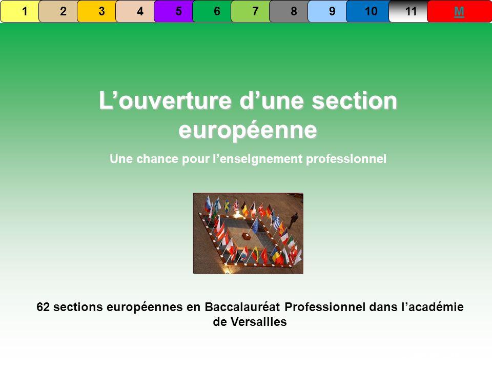 Louverture dune section européenne Une chance pour lenseignement professionnel Septembre 2009 62 sections européennes en Baccalauréat Professionnel da