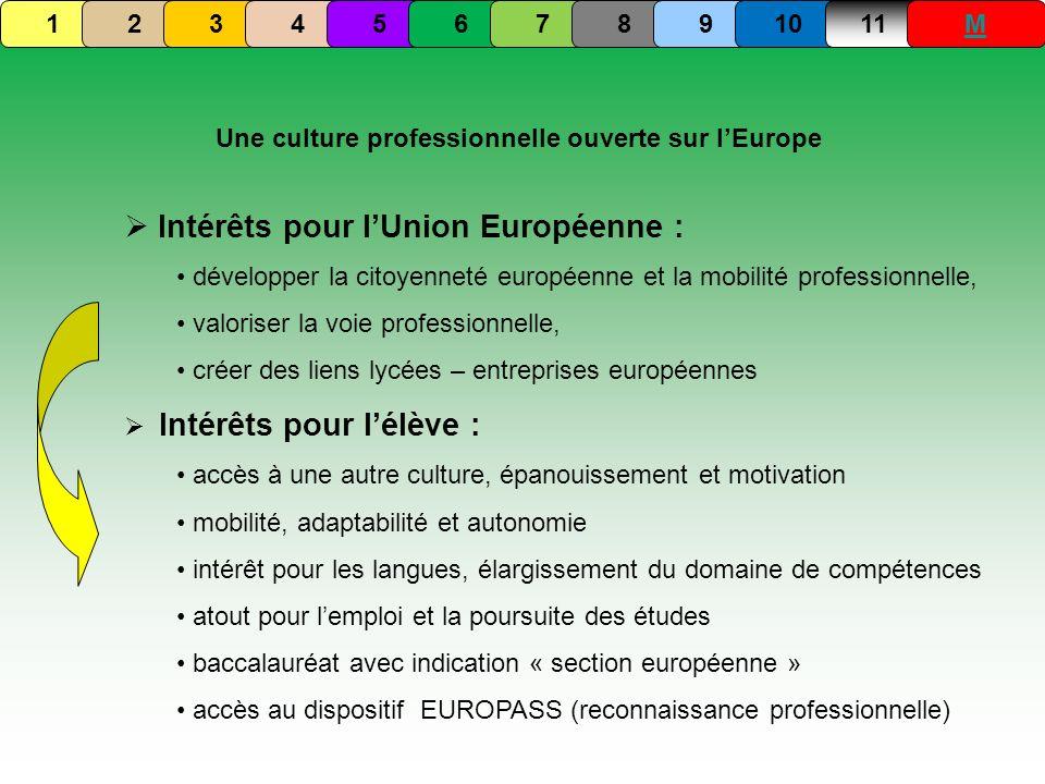 Une culture professionnelle ouverte sur lEurope Intérêts pour lUnion Européenne : développer la citoyenneté européenne et la mobilité professionnelle,
