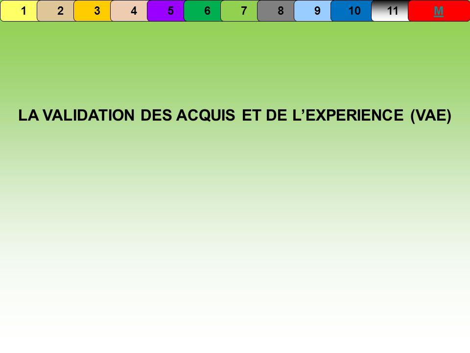 LA VALIDATION DES ACQUIS ET DE LEXPERIENCE (VAE) 1234567891011M