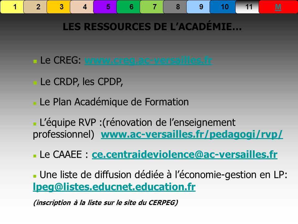 LES RESSOURCES DE LACADÉMIE… Le CREG: www.creg.ac-versailles.frwww.creg.ac-versailles.fr Le CRDP, les CPDP, Le Plan Académique de Formation Léquipe RV
