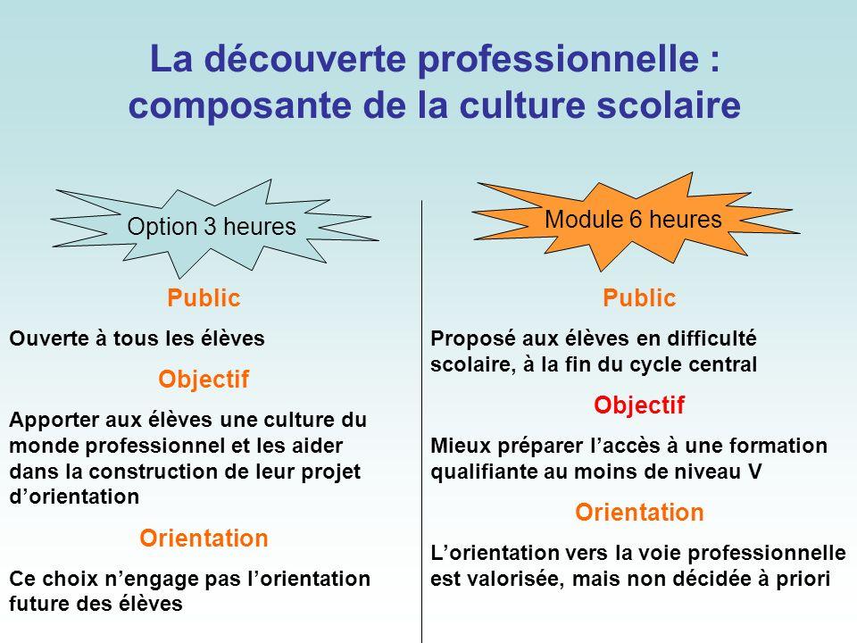 La découverte professionnelle : composante de la culture scolaire Public Ouverte à tous les élèves Objectif Apporter aux élèves une culture du monde p