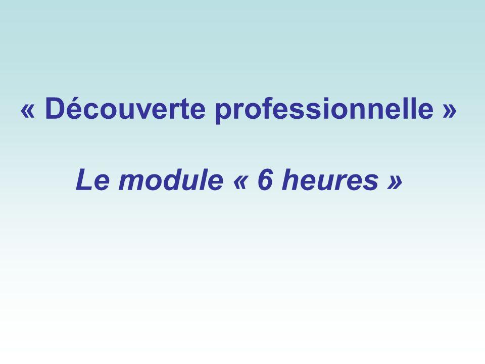 « Découverte professionnelle » Le module « 6 heures »