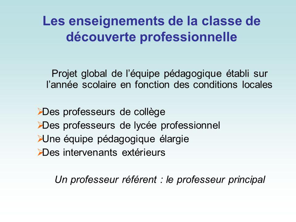 Les enseignements de la classe de découverte professionnelle Projet global de léquipe pédagogique établi sur lannée scolaire en fonction des condition