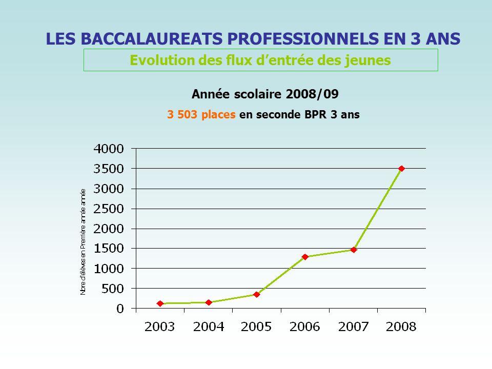 LES BACCALAUREATS PROFESSIONNELS EN 3 ANS Evolution des flux dentrée des jeunes Année scolaire 2008/09 3 503 places en seconde BPR 3 ans
