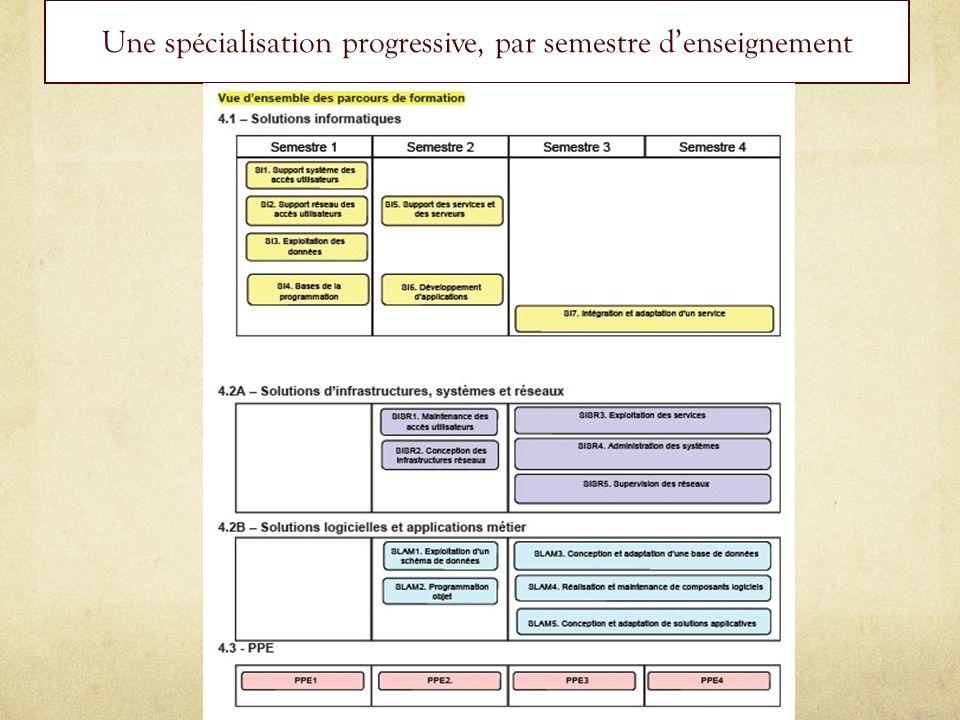 Une spécialisation progressive, par semestre denseignement