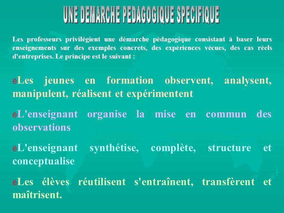 Les professeurs privilégient une démarche pédagogique consistant à baser leurs enseignements sur des exemples concrets, des expériences vécues, des ca