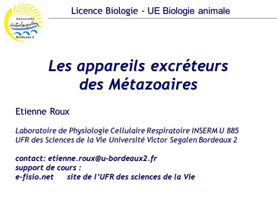 Les appareils excréteurs des Métazoaires Etienne Roux Laboratoire de Physiologie Cellulaire Respiratoire INSERM U 885 UFR des Sciences de la Vie Unive