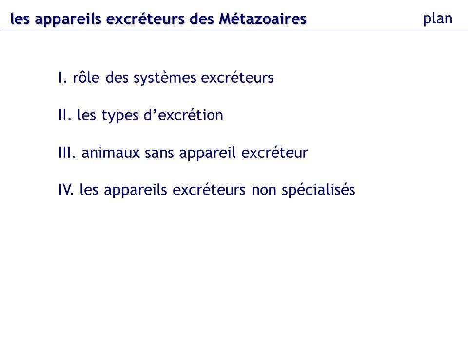 les appareils excréteurs des Métazoaires plan I. rôle des systèmes excréteurs II. les types dexcrétion III. animaux sans appareil excréteur IV. les ap