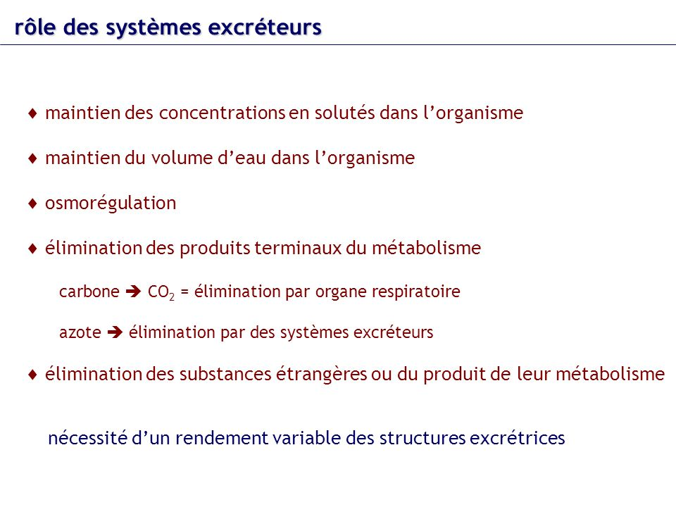 rôle des systèmes excréteurs maintien des concentrations en solutés dans lorganisme maintien du volume deau dans lorganisme osmorégulation élimination