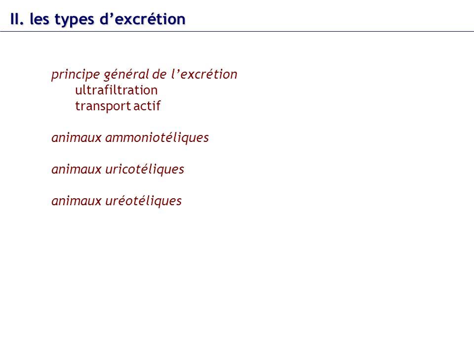 II. les types dexcrétion principe général de lexcrétion ultrafiltration transport actif animaux ammoniotéliques animaux uricotéliques animaux uréotéli