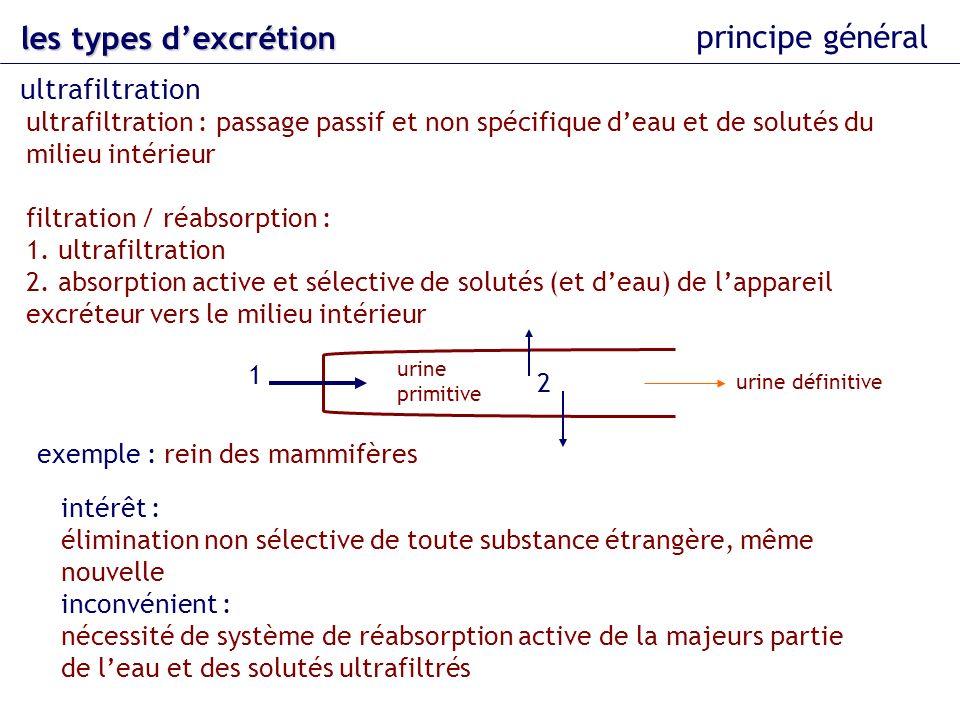 les types dexcrétion principe général mise en évidence : ultrafiltration dinuline inuline : polysaccharide végétal de faible poids moléculaire (5000 Da) non produite par lorganisme non métabolisée par lorganisme passe la barrière de filtration jamais excrétée manière active jamais réabsorbée de manière active (aucun mécanisme de transport actif connu) injection dinuline dans le corps : si présence dinuline dans lurine : ultrafiltration toute linuline présente dans lurine définitive est le résultat dune filtration ultrafiltration